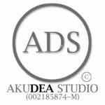 Akudea Studio Professional Service