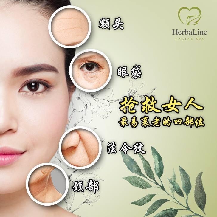 Herbaline Facial Spa (SKIN ESSENTIALS)