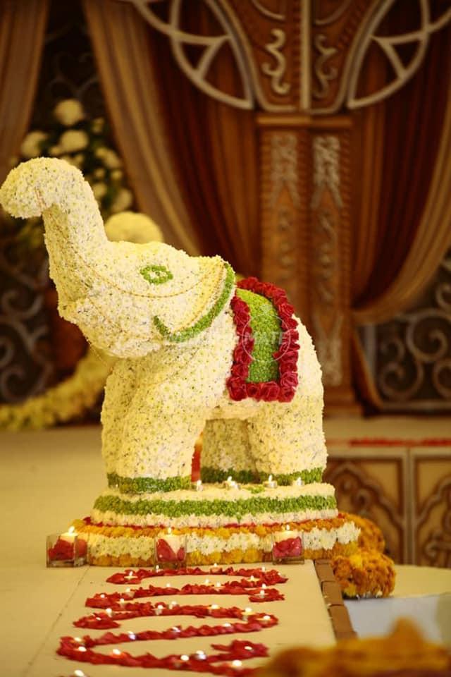 D Wedding Dreams Sdn Bhd