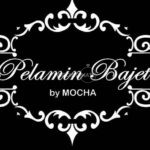 Pelamin Bajet By MOCHA