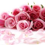 Pusat Kursus Kahwin Astana Mukmin
