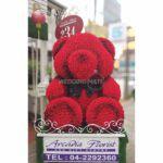 Arcadia Florist & Gift Centre