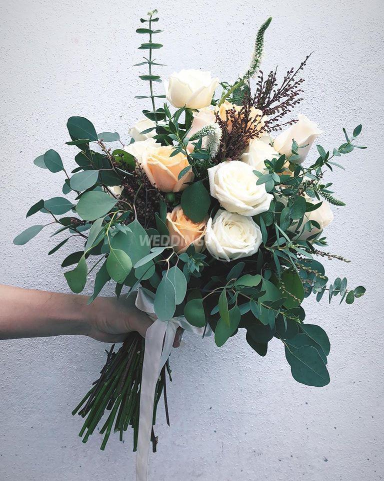 February Bloom MY