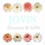 Jovin Flowers & Gifts