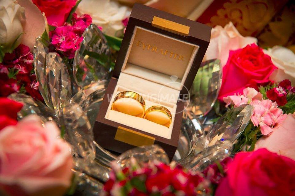SG Engagement Trays