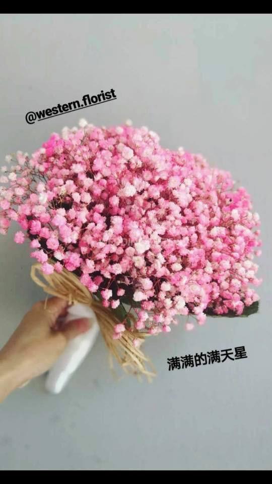 Western Florist JB