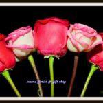 Mama Florist and Gift Shop