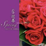 Spring Florist & Gifts