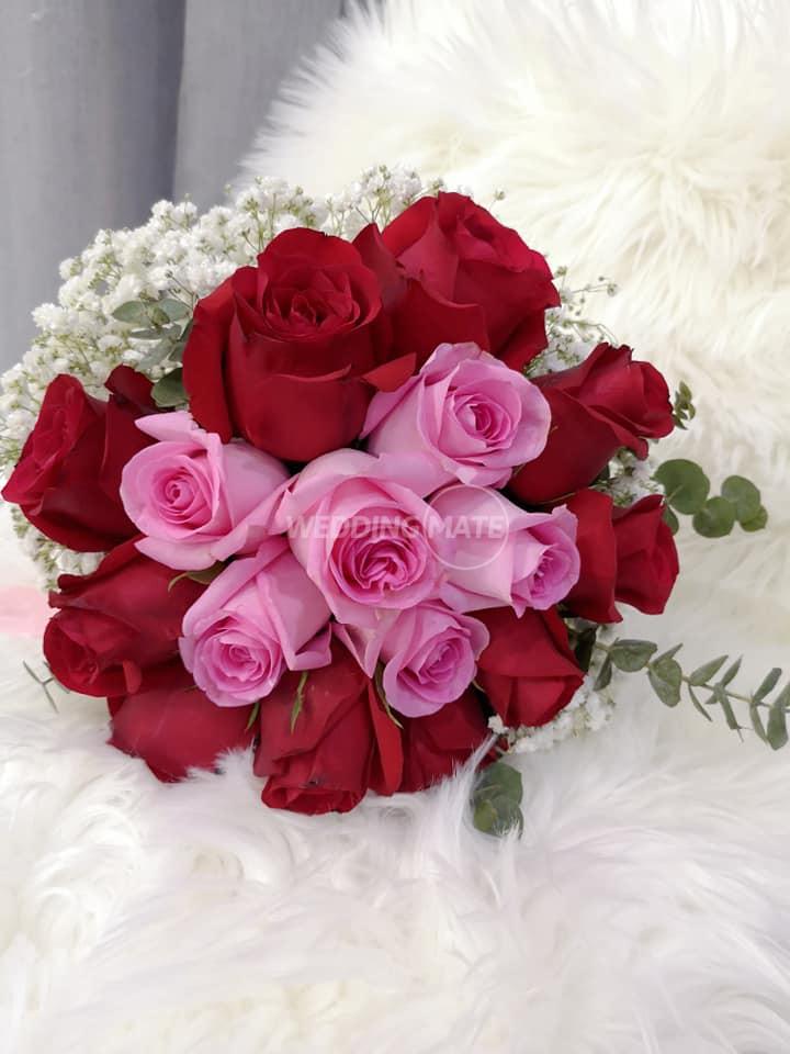 Vivicole Flowers